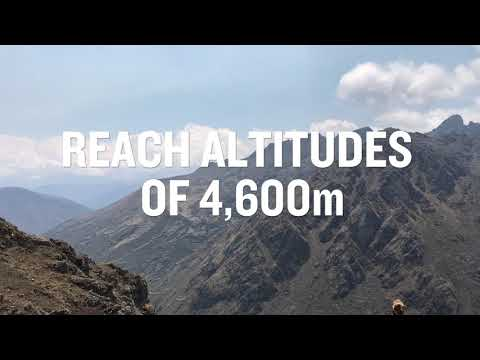 Conquer Machu Picchu with the BHF