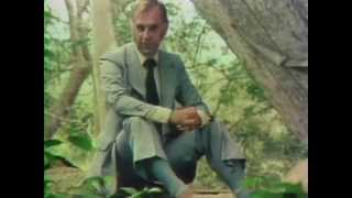 The Long Search - Buddhism: Footprint of the Buddha (BBC 1977)
