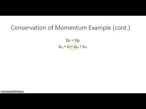 Conservation Momentum