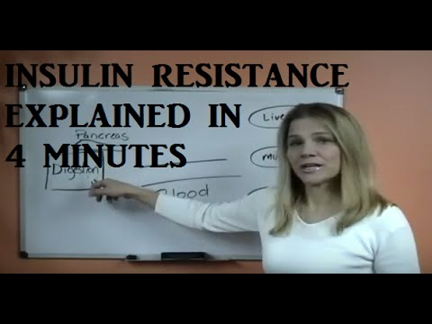 Insulin Resistance Explained