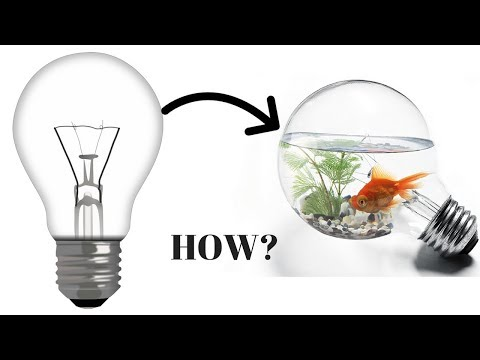 How to make bulb aquarium | Diy bulb aquarium | bulb diy |diy | life hack