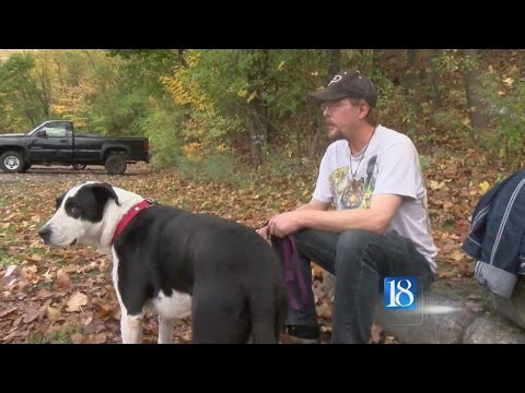 Homeless man and dog find home together
