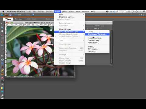 PhotoShop Elements - Hue & Saturation Layer