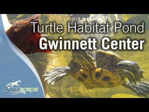 Turtle Habitat Pond at Gwinnett Environmental Heritage Center