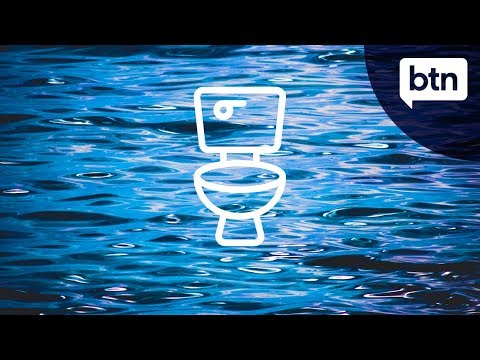 Where does toilet water go? - Behind the News
