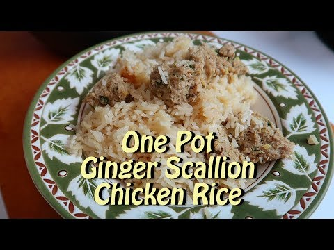 Rice Cooker Ginger Scallion Chicken Rice Cooking Vlog 59