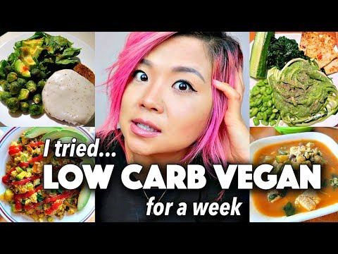 LOW CARB VEGAN diet // Final Thoughts & What I Ate in a Week (days 5-7)