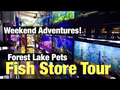 Forest Lake Pets Tour - Aquarium Road Trip 70 miles