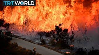 California Wildfires: Blazes predicted to burn through Christmas