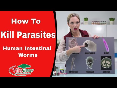 How to Kill Parasites : Human Intestinal Worms : Parasite Cleanse - VitaLife Show Episode 177
