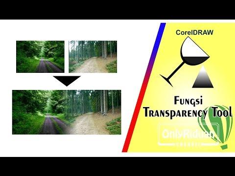 Cara Menggunakan Transparency Tool di CorelDRAW - Tutorial CorelDRAW