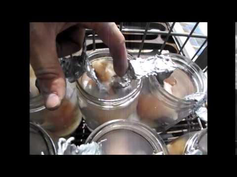 Homemade Lead Acid Batteries