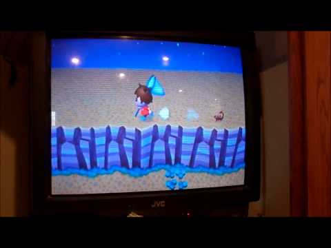 Animal Crossing: City Folk - Tarantula and Scorpion Hunting 2