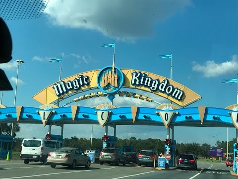 Day 8  Disney Magic Kingdom