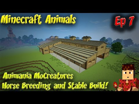 Minecraft Animals Ep7 Animania MoCreatures Horse Breeding and Stable Build
