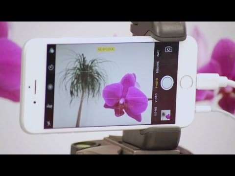 5 Unique Ways To Release The iPhone's Shutter
