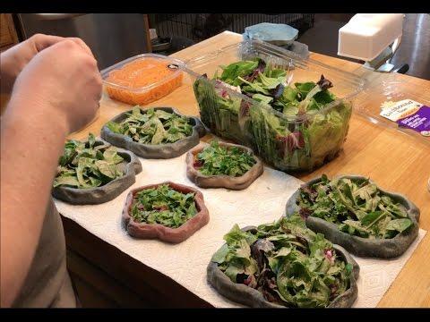Feeding Tortoises Fresh Foods
