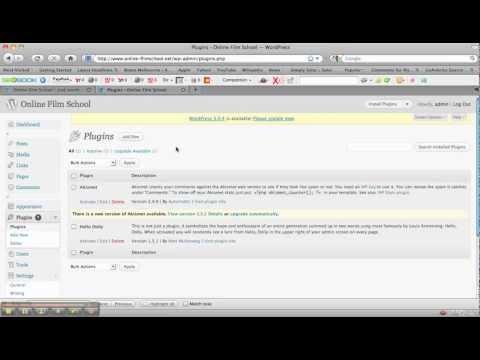 How To Use WordPress CMS - WordPress Tutorial 1