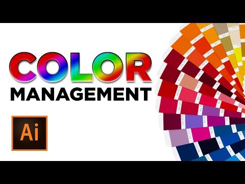 Adobe Illustrator Color Management - Pantone, CMYK, & RGB