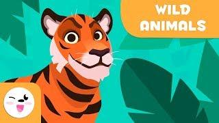 Wilde Tiere für Kinder - Wortschatz für Kinder