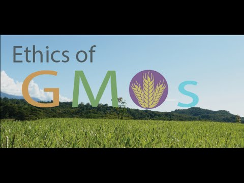 Ethics of GMOs: A Panel Discussion