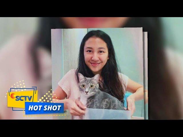 Download Geram! Sherina Munaf Ikut Berkomentar Atas Kasus Kucing yang Dijagal dan Dijual Dagingnya | Hot Shot MP3 Gratis