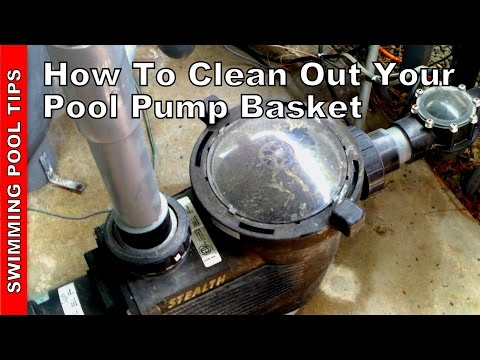 How To Clean Out Your Pool Pump Basket
