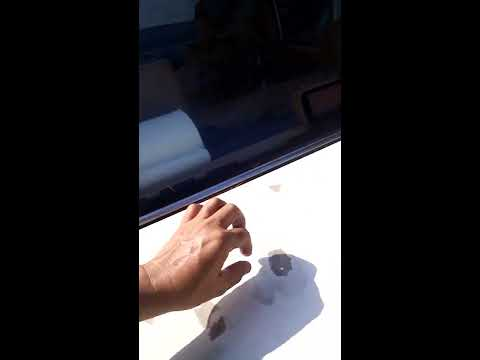 Remove stubborn dry tree sap from car