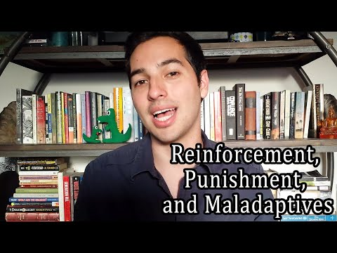 ABA Therapy: Reinforcement, Punishment, and Maladaptives