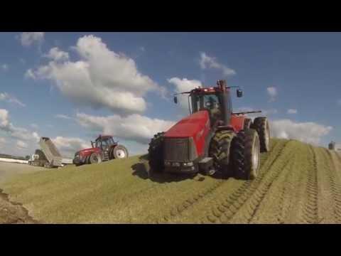 Chopping corn silage near Versailles Ohio