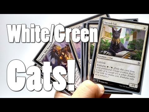 How to build a Modern W/G Cat Deck!
