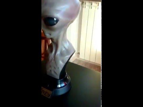Elite creature collectibles alien the grey  statue