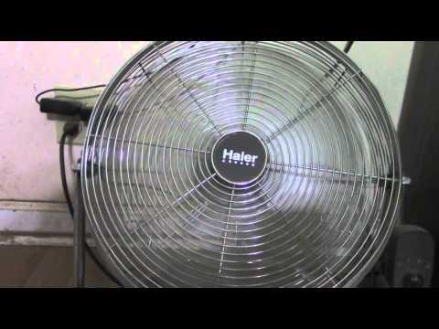 Fan Spins