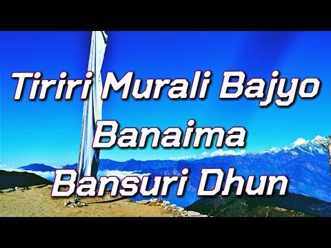 Heart Touching Nepali Melody (Tiriri Murali Bajyo)on Nepali Flute by Raman Maharjan