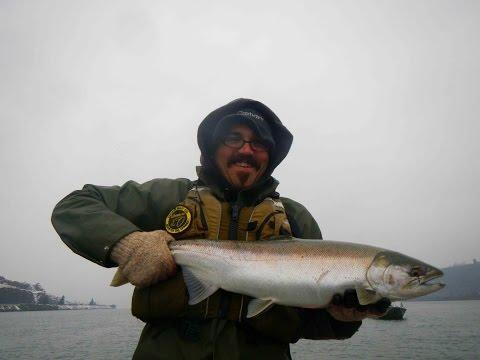Columbia River Salmon/Steelhead: Compilation 2014