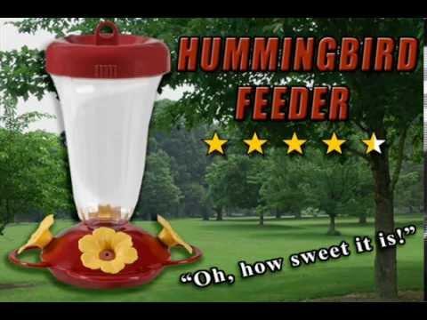 humingbird feeder 2015