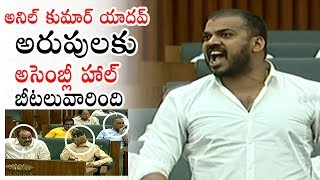 Minister Anil Kumar Yadav MOST Aggressive Speech EVER | AP Assembly Sessions | Political Qube