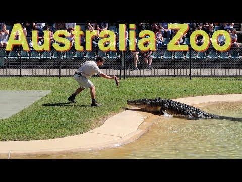 Australia Zoo   Steve Irwin   Vegan   VLOG