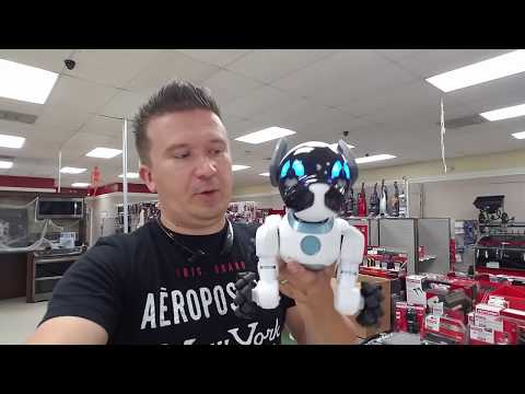 Meet The World's First Lovable Robot Dog Chip Unboxing ZIMALETA Daily Vlog