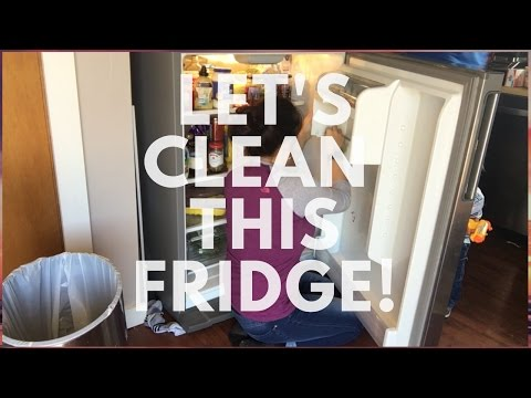 Cleaning Out the Fridge - an Actual DIRTY Fridge!