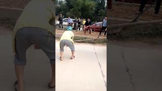 Giant Snake Causing Traffic  || ViralHog