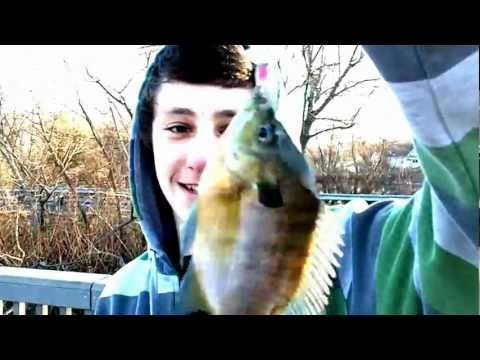 Winter bluegill fishing