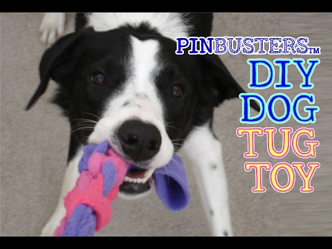 DIY Braided Dog Tug Toy // DOES THIS PET TOY HACK REALLY WORK?