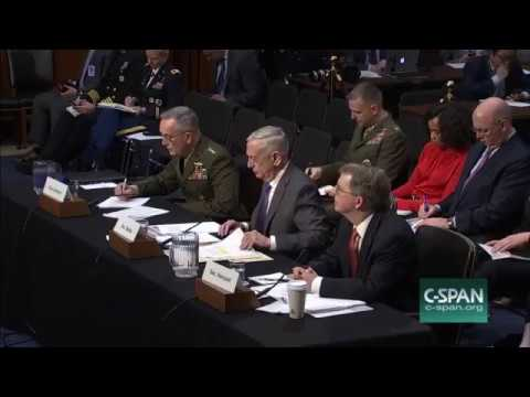 Mad Dog Mattis ,Gillibrand clash in committee over transgender military service