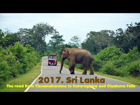 MyWay. Sri Lanka. 2017. 03a. Tissamaharama - Kataragama - Diyaluma Falls
