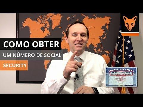 Como Obter um Número de Social Security como Estudante | Lumos Language School