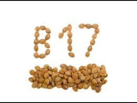 Why YOU should STOP Looking for VITAMIN B17