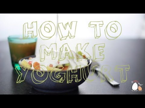 Homemade Yoghurt with Cow, Goat, Sheep or Soy Milk