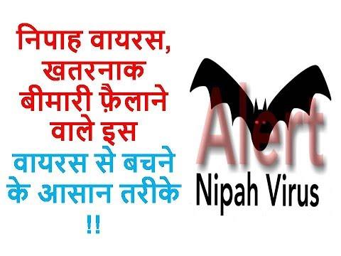 निपाह वायरस, खतरनाक बीमारी फ़ैलाने वाले इस वायरस से बचने के आसान तरीके || Ayurveda Home Care