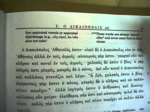 Ancient Greek foreign language progress - 2nd grade